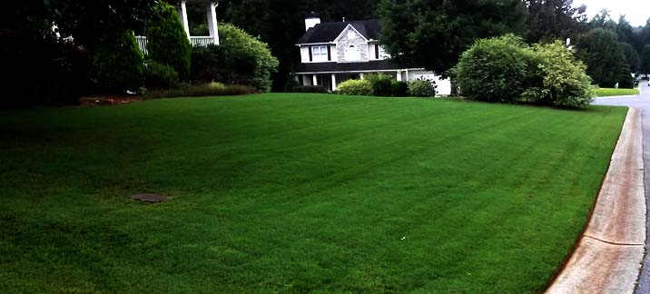 "A lawn we ""mulch"" mow in dallas, ga"