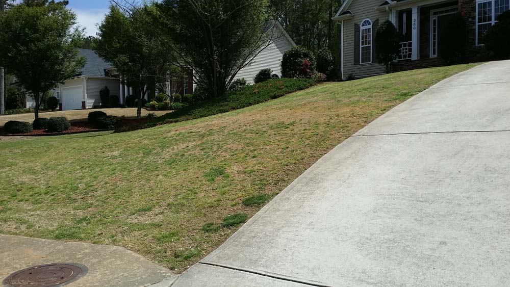 Lawn Care Acworth GA - Bermuda Lawn Down
