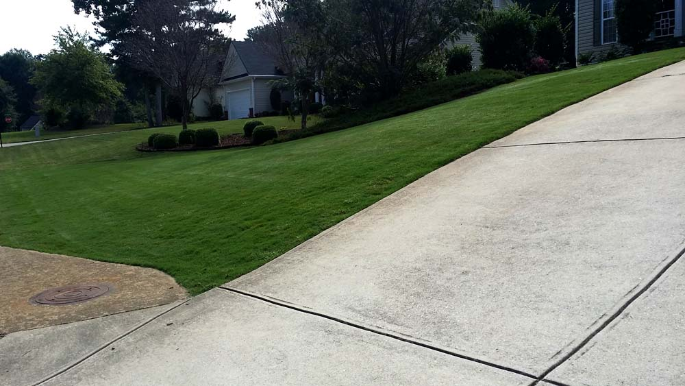 Weed Control | Fertilization - Lawn Care Acworth Ga