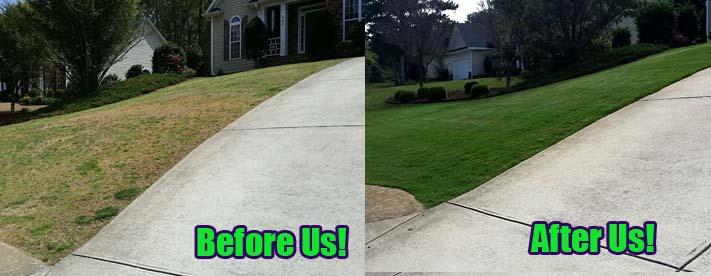 Weed Control Acworth Ga | Lawn Restoration