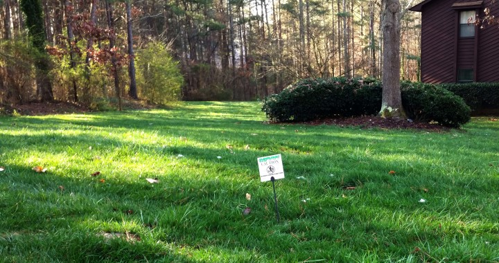 Fescue Lawn Care Acworth Ga